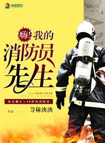 嗨!我的消防員先生